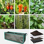 Gemüse-Kräuterbeete